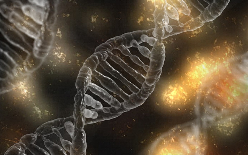 parkinson_genes